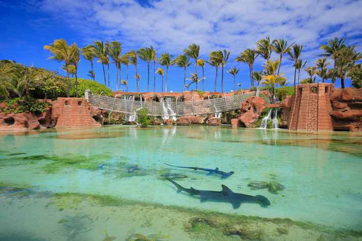 Luxury Atlantis Hotel, Bahamas. Waterpark, marine life on Paradise Island